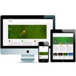 responsive-wordpress-website